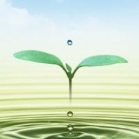 إنشاء-محطة-تحلية-ومعالجة-مياه-ال Picture