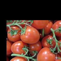 الاستثمار-الامثل-فى-زراعة-الطماط Picture