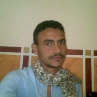 احمد محمد نورالدين Profile Picture