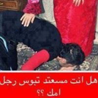ابو شهد profile picture