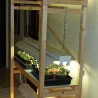 مشروع-الزراعة-داخل-المنزل-وربح-ج Picture