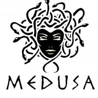 medusa perfumes Project Picture