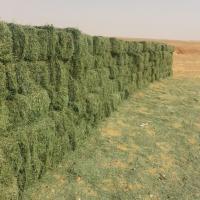 مشاريع زراعية في السودان  والتصد Project Picture