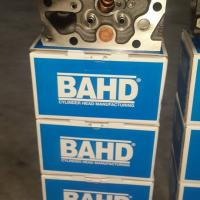 BAHD Project Picture