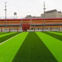 ملعب كرة قدم نجيل صناعى خماسى Project Picture