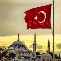 شركة استثمار عقارى فى تركيا Project Picture