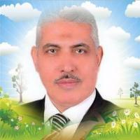 profile-236928 Profile Picture