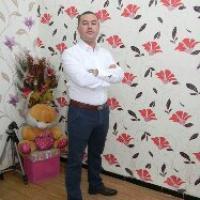 profile-243632 Profile Picture