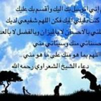 Mohsen Salem Profile Picture