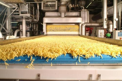 بطاطس نصف مقلية - French Fries factory project Project Picture