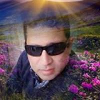 Esam Fawzi profile picture
