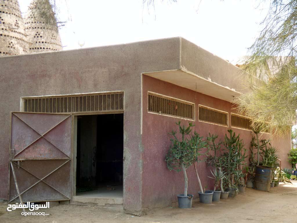 مزرعة عجول ومواشى Project Picture