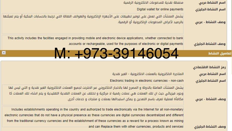 محفظة الكترونية رقمية عربية Cover Image