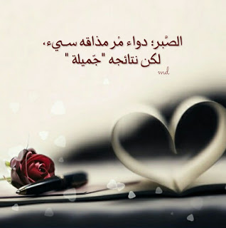 medhatsayed4@gmail-com Profile Picture