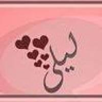 Osama Allam Profile Picture