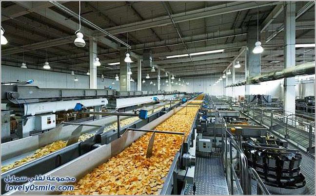 جمعية زراعية ومصنع لانتاج البطاط Project Picture
