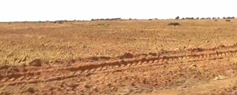 أرض على مساحة 1000 فدان مطلوب ممول Cover Image