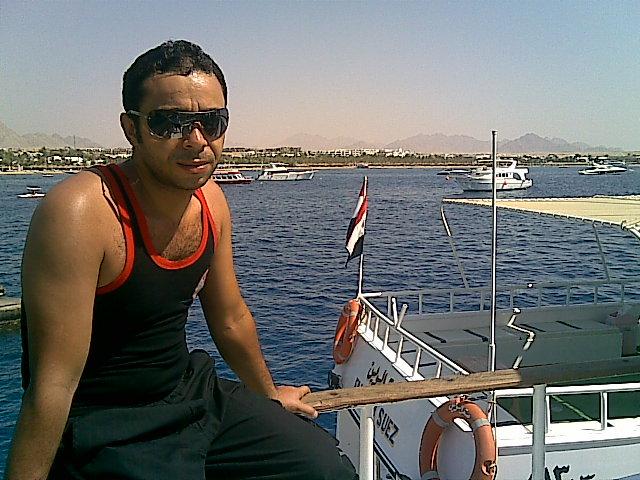 profile-229474 Profile Picture