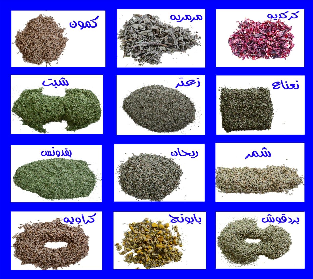 تصدير الاعشاب والتوابل والنباتات الطبيه Cover Image