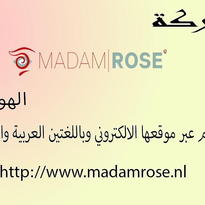 Mdam Rose تجارة الورد الهولندي حوا العالم  Project Picture