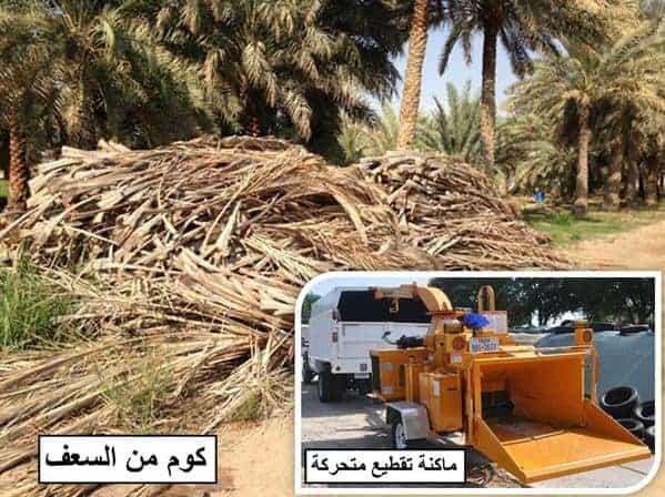 تدوير سعف النخيل Project Picture