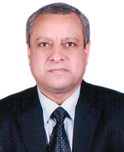 محمد هريدى Profile Picture