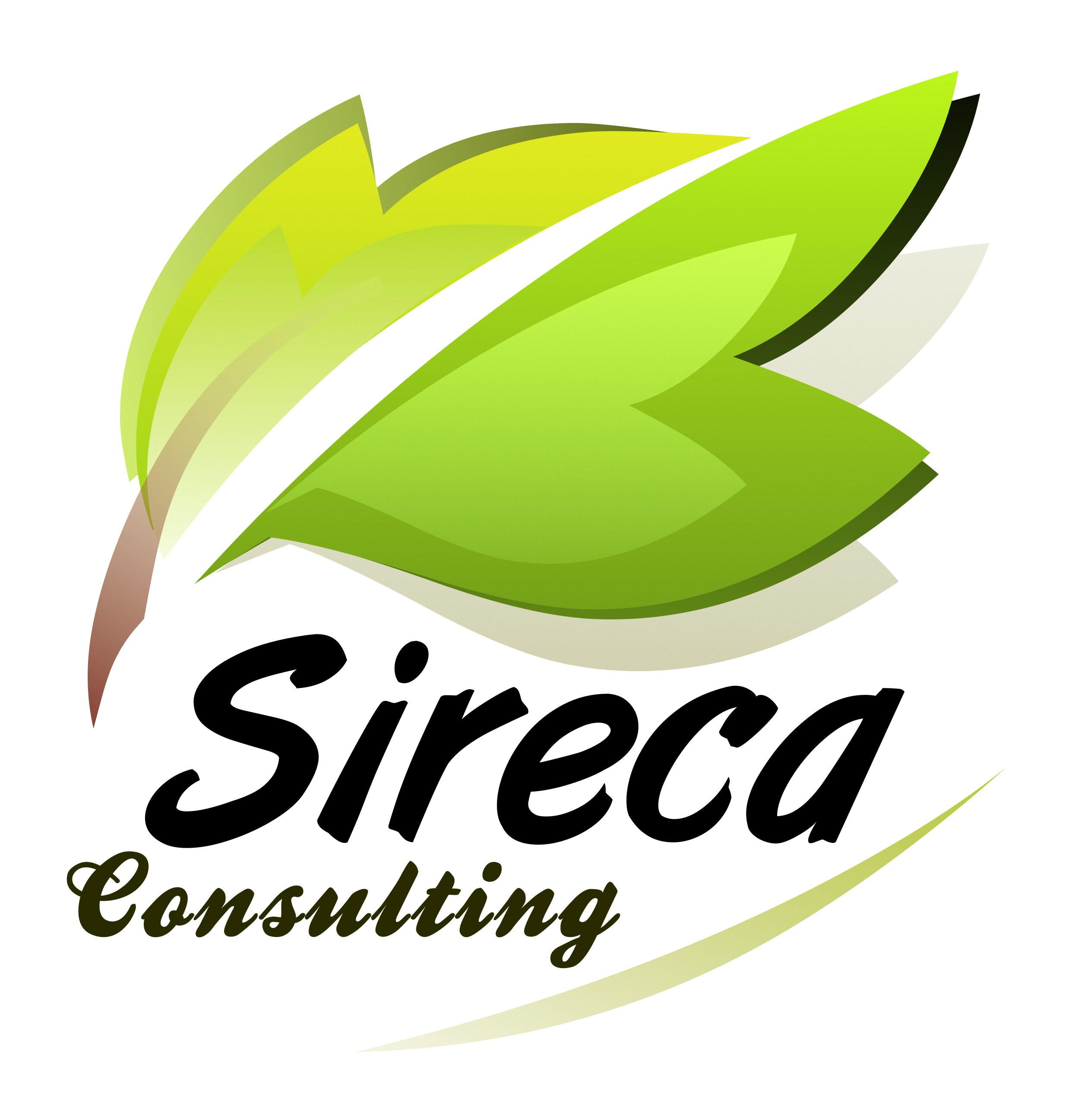 sireca Profile Picture