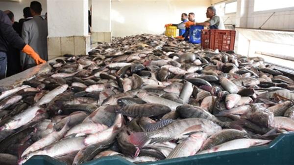 مزرعه سمكية والقدرة على توريدأى كمية من الأسماك Project Picture