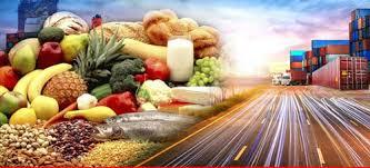 تصدير الخضروات والفواكة وعمل مزرعة دواجن وابقار Project Picture