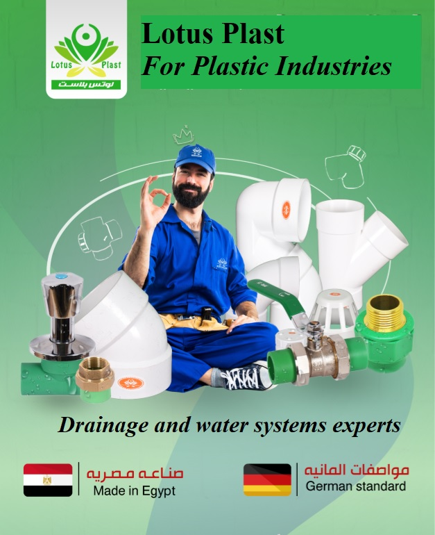 MuhammadSafwat Profile Picture