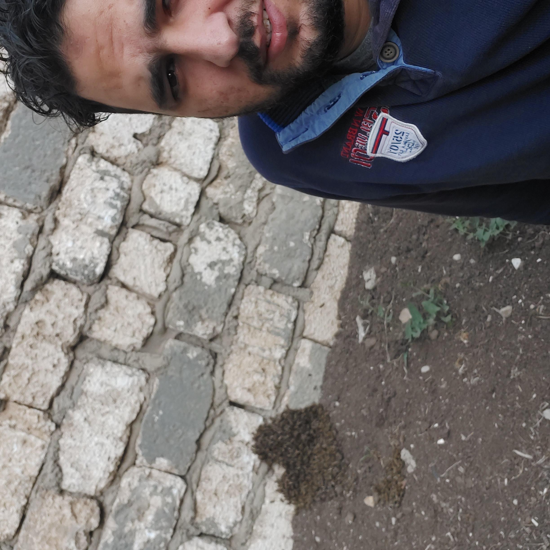 mahmoud-salah Profile Picture